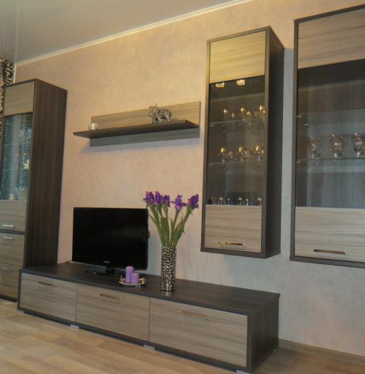 Гостиные-Гостиная «Модель 4»-фото3